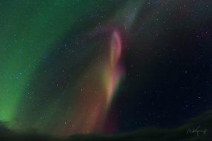 2014 Iceland – Phoenix